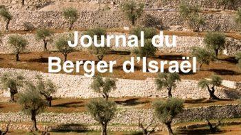 Permalien vers:Journal Berger d'Israël